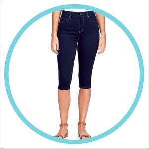 Plus Size GLORIA VANDERBILT Skinny Skimmer Pants